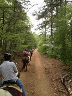 [Image: If you love horse back riding than you will love venturing out on our scenic trails. ]